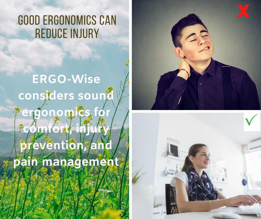 1-ERGO-Wise - good ergonomics can reduce injury
